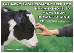 VEGANISM: A TRUTH WHOSE TIME HAS COME: 100 FAVORITE PICS