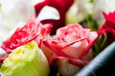 Pink Rose - A pink rose sits among other flowers in a bouquet.