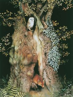 "Barn owl and fox in old oak tree print Barn Owl and Fox In Old Oak Tree ~ water color illustration from the children's book ""The Acorn's Story,"" by artist Valerie Greeley. Art And Illustration, Book Illustrations, Watercolor Illustration, Art Fox, Old Oak Tree, Watercolor Trees, Tree Print, Owl Print, Art Graphique"