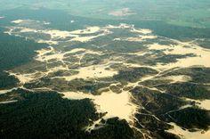 Dunes in the area around Drunen