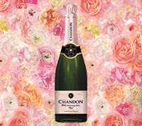 Domaine Chandon Wine - Sparkling, Red & White Wines
