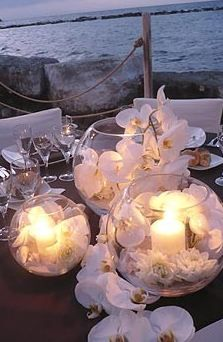beach wedding decor: white orchids in bubble balls with lit up candles. cluster … beach wedding decor: white orchids in bubble balls with lit up candles. cluster together various sizes to give more illuminance. Perfect Wedding, Our Wedding, Destination Wedding, Wedding Planning, Dream Wedding, Wedding Beach, Trendy Wedding, Night Beach Weddings, Wedding Ceremony
