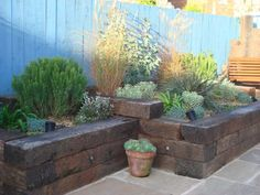 Howard & Tracey's mediterranean garden with railway sleepers