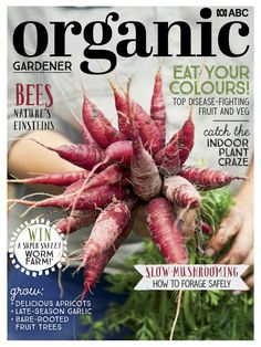 Our new issue is out today! It's filled with colour and ideas for your garden, including growing apricots, foraging for mushrooms and the secret to late-season garlic. Get a copy now! Fruit And Veg, Fruits And Vegetables, Worm Farm, Fruit Trees, Indoor Plants, Organic Gardening, Magazine, Stuffed Mushrooms, Grow Your Own