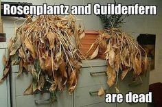 Rosenplantz and Guildenfern are dead. If you understand this botanical reference, congratulations! You are a true English and theater geek like me -- meaning that you have secret powers of extra awesome, of course. Ah, Shakespeare jokes. English Teacher Humor, Teacher Humour, Teacher Stuff, Drama Teacher, Drama Class, English Teachers, Teacher Memes, Shakespeare Funny, William Shakespeare