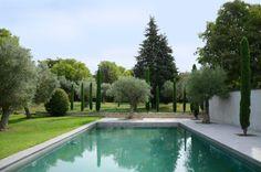 paysage alentour arbres insérés dans la terrasse