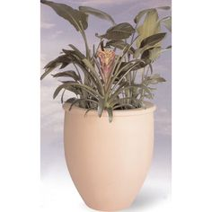 "Allied Molded Products Round Pot Planter Size: 42"" H x 38"" W x 27.5"" D, Color: Evening Shadows"