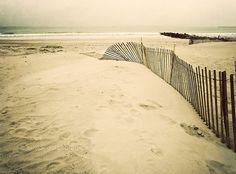 "Items similar to beach home decor, ""falling fence"" fine art photograph, ocean, cape cod, coastal wall art on Etsy Beach Pictures, Beach Pics, Coastal Wall Art, Beach Bungalows, Beach Cottage Decor, Hamptons House, Beach Cottages, Beach Themes, Beach House"