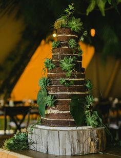 chocolate naked cake wedding - Google Search