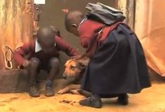 Maternal dog takes care of two children after they are abandoned by human mother
