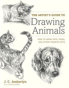 Download Pdf The Artist S Guide To Drawing Animals How To Draw Cats Dogs And Other Favorite Pets By J C Amberly Animal Drawings Artists Guide Cat Drawing