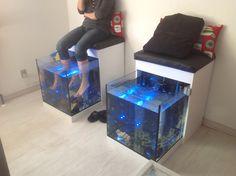 To af vores fire akvarier til fodbehandling Fish Pedicure, Garra, Arcade Games, Fire