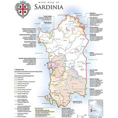 """#Sardinia #wine #map showing DOCG & DOC regions, #Cannonau """"Classico zone"""" and notable Sardinian wineries. #Italy #winetour #winetasting #winelover #winery #winemap #infographic"""