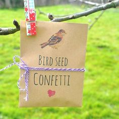 Bird seed confetti | natural wedding confetti