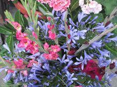 Raccontare un paese: dal mio orto: fiori per voi e...