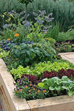 Potager Garden, Veg Garden, Tomato Garden, Vegetable Garden Design, Garden Cottage, Fruit Garden, Edible Garden, Garden Tomatoes, Garden Beds