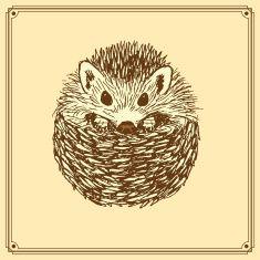 Pix For gt Hedgehog Cute Drawing Watercolor Pinterest