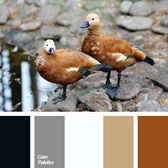Paleta de colores Ideas | Página 202 de 282 | ColorPalettes.net Black Color Palette, Colour Pallette, Colour Schemes, Colour Combinations, House Color Palettes, Terracota, Color Balance, Design Seeds, Color Stories