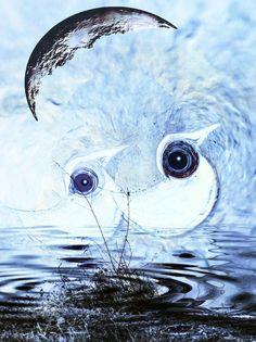 Neu in meiner Galerie bei OhMyPrints: Weisse Vögel - abstrakt