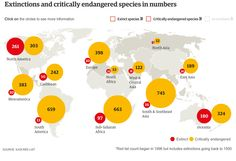 From Smithsonian.com. Extinction Rates are Biased and Much Worse Than You Thought