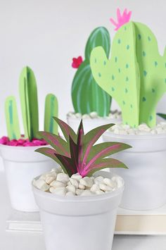 DIY Paper Cactus and Grasses, Delineate Your Dwelling - Diy for Home Decor Cactus Flower, Cactus Plants, Flower Bookey, Flower Film, Flower Pots, Crafts To Make, Easy Crafts, Quilling, How To Grow Cactus