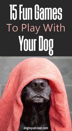 Dog Training, Training Tips, Pet Dogs, Dogs And Puppies, Dog Games, Dog Behavior, Dogs Of The World, Dog Mom, Dog Life