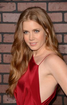 Amy Adams Long Wavy Cut - Amy Adams Long Hairstyles Looks - StyleBistro