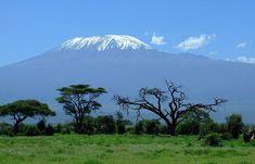 Safari in Kenia en Tanzania Arusha, Kenya Travel, Africa Travel, Monte Kilimanjaro, Kilimanjaro Climb, African Vacation, Delta Del Ebro, Mount Kenya, Tanzania Safari