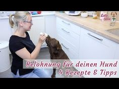 Dogs, Youtube, Animals, Dog Snacks, Pooch Workout, Camera, Food Recipes, Animales, Animaux