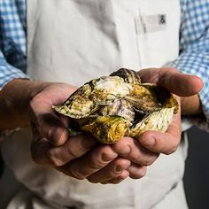 How to Make Oysters Gregory with Grilled Leeks, Bacon and Paprika   Tasting Table Recipe