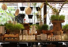 terrain, the urban affiliated gardening store, fabulous clutter organization