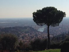 #Verona from the top of the hill!