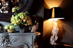 Эбигэйль Эхен, ее собаки, светильники, столы и зеркала - Лучшие дизайнерские находки