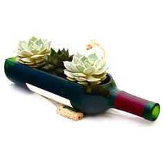 Wine Bottle Planter Autumn , $19.99, now featured on Fab.