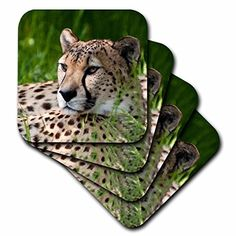 3dRose cst_22235_3 Cheetah Ceramic Tile Coaster Set of 4 -- Click on the image for additional details. (This is an affiliate link)