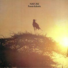 Fumio Itabashi - Nature (reissue) (Mule Musiq) #music #vinyl #musiconvinyl #soundshelter #recordstore #vinylrecords #dj #SoulJazz