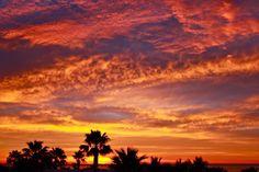 Cabo Sunrise simply beautiful  CONNIE MEYERHOFF SNELL REAL ESTATE CONNIEMEX.COM