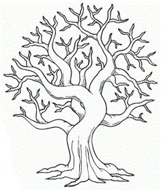 fall tree colouring page - Birch Tree Branches Coloring Pages