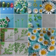 How to make Paper Daisies step by step DIY tutorial instructions thumb , How to, how to make, step by step, picture tutorials, diy instructi by Mary Smith fSesz