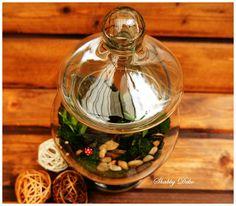 Glass Ball, Terrarium, Christmas Bulbs, Table Decorations, Holiday Decor, Home Decor, Terrariums, Decoration Home, Christmas Light Bulbs