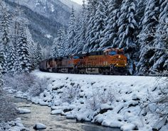 Winter Wonderland   davehonan.com - In a narrow valley on the east side of Stevens Pass, I found an empty grain train cruising downgrade along Nason Creek through a Cascade Range conifer forest covered in a clean coating of fresh white snow.