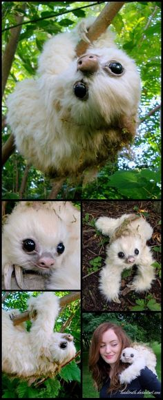 Baby Moss-Sloth, Handmade Fantasy Creature by Heiditruth. Yes, it's a fake sloth. One that I could keep with me always and besides sloths don't live in North America. Cute Baby Sloths, Cute Sloth, Baby Otters, Cute Little Animals, Cute Funny Animals, My Spirit Animal, My Animal, Tier Fotos, Cute Creatures