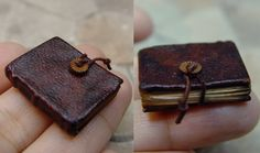 EV Miniatures: Miniature Journals