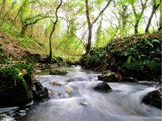 Bishopston Valley, Swansea, Wales