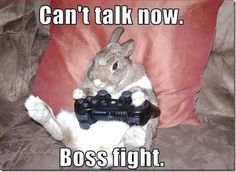 Google Image Result for http://www.r4revolutionds.co.uk/wp-content/uploads/2011/09/funny-pictures-rabbit-plays-video-games6.jpg