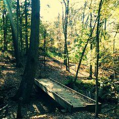 My day hiking