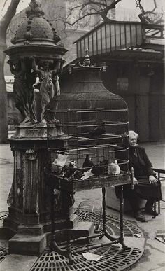 Rosalie Gwathmey (Sep. 15, 1908 - 2001): Paris Bird Market, 1950s - gelatin silver print (Smithsonian)