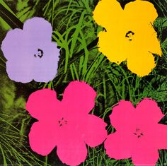 Flowers, 1970 - I love this series