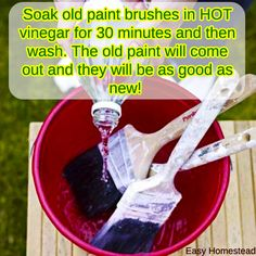 Reviving Paint Brush with #Vinegar