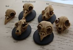 Antiqued Resin Skull Bat Wolf Bird Cameo Cabs by LeanderOrnaments